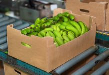 Food packaging alimentare riciclabile