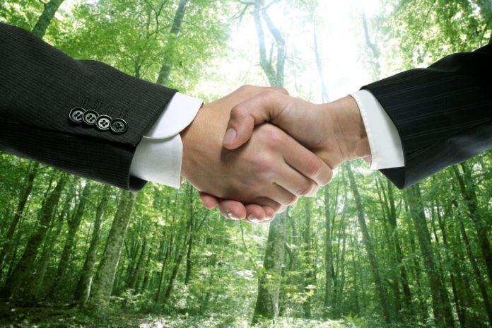 Finanza green, finanziamenti alle aziende sostenibili
