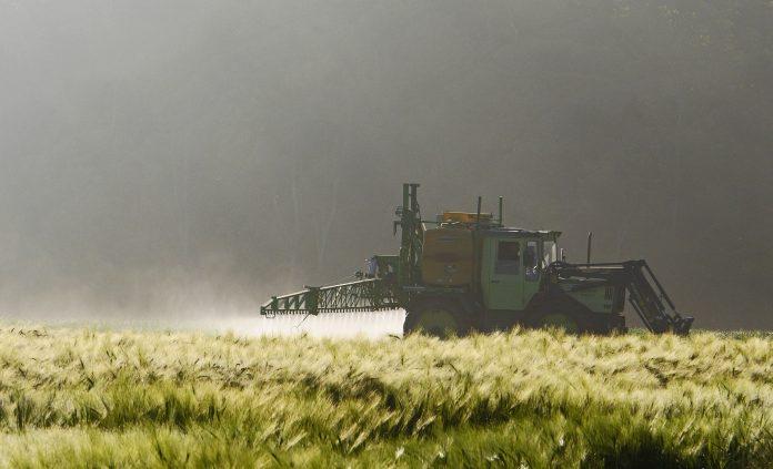 Rischio alimentare: pesticidi in agricoltura
