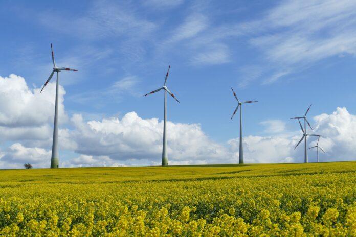 Pale eoliche, energia rinnovabile